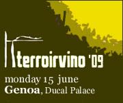 terroir-vino2