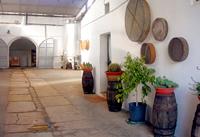 antica-enotria-wine-pleasures