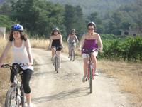 bike tour2